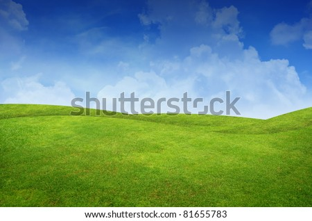 Green grass landscape - stock photo
