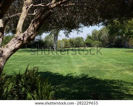 Green grass lawn field in big Mediterranean style design garden - stock photo