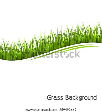 Green grass lawn wave isolated on white. Floral eco nature background - stock photo