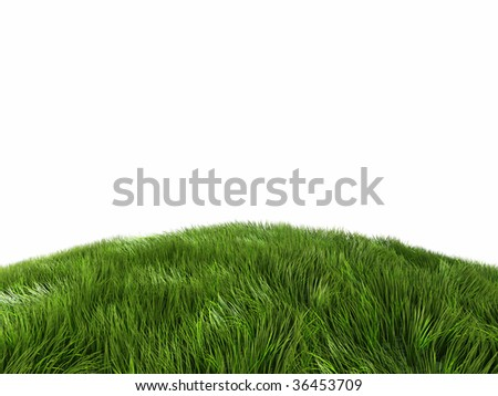 green grass meadow - stock photo
