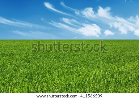 Green grass meadow land with blue sky with clouds - stock photo