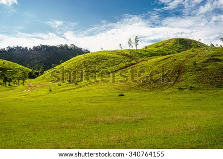 green grass mountain in rainy season at Ranong province, southern Thailand
