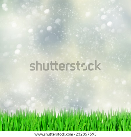 Green grass on a abstract bokeh background - stock photo