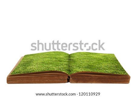 green grass on a book - stock photo