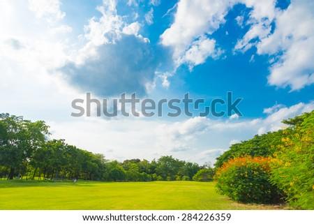 Green grass on a golf field - stock photo