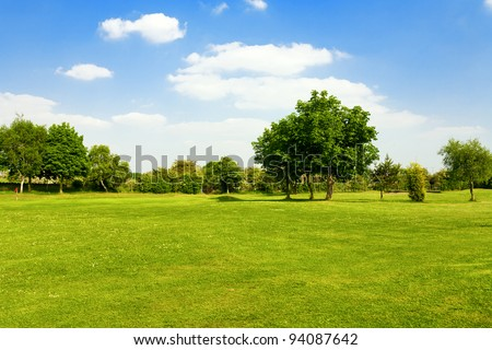 Green grass on a golf field