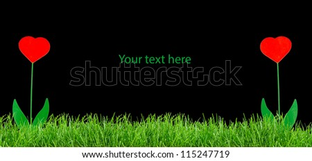 green grass on black background with abstract flowers - stock photo