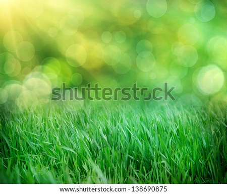 green grass on defocused light green background