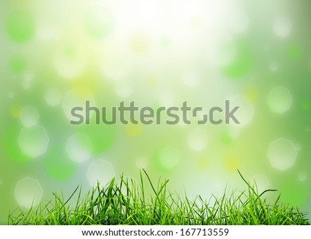 green grass on the abstract backgrounds