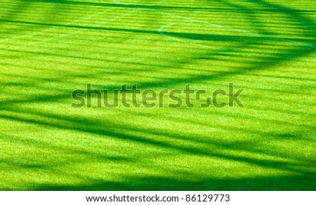 green grass on the football field