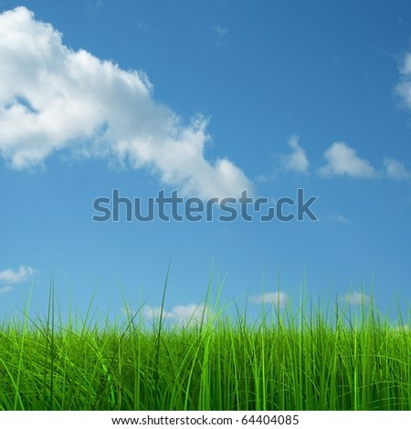Green grass over a blue sky background - stock photo