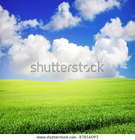 green grass over wonderful blue sky with sunlight - stock photo
