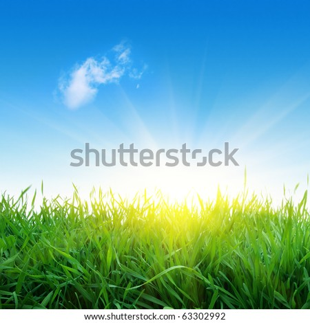 Green grass,single cloud in blue sky and sunlight. - stock photo