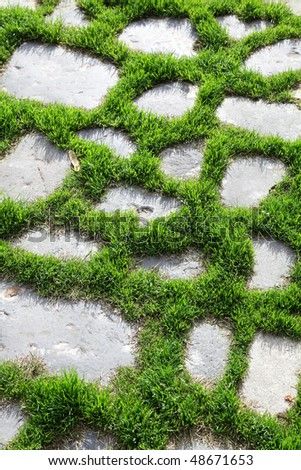 Green grass sprouting between stones on a footpath