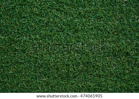 green grass texture and background