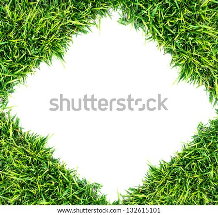 green grass texture and white background - stock photo