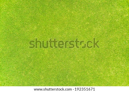 Green grass texture Golf course for background - stock photo