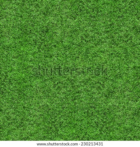 Green grass texture seamless background, perfect for nature, environment, sport and more... - stock photo