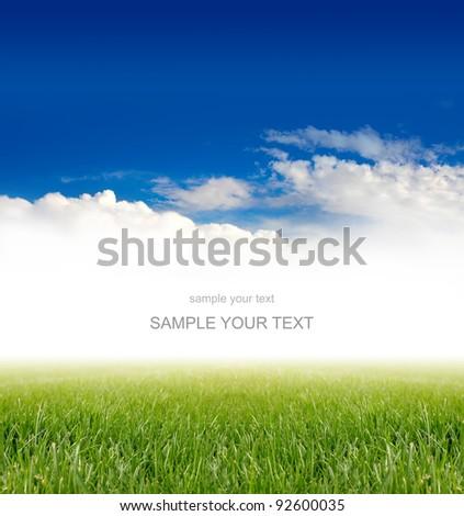 green grass under blue sky - stock photo