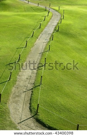 Green grass winding road field meadow aerial view
