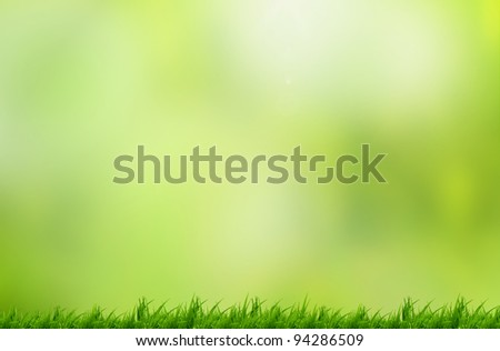 Green grass with beautiful background - stock photo