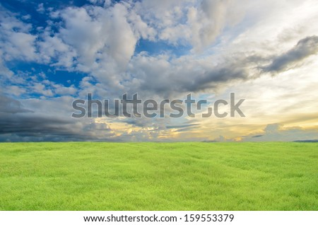 Green grass with blue sky as background