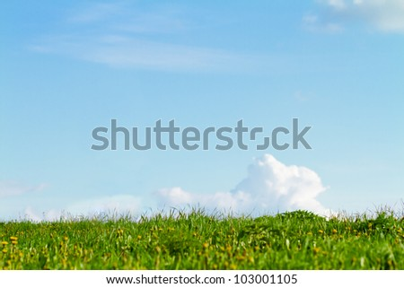 Green grass with blue sky, lot of copy space - stock photo