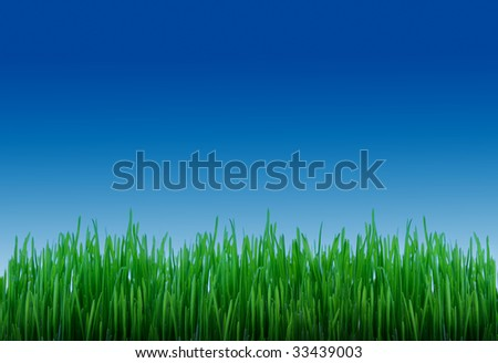 Green grass with clear blue sky - stock photo