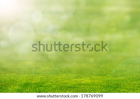 Green Grass with Defocused Horizon - stock photo