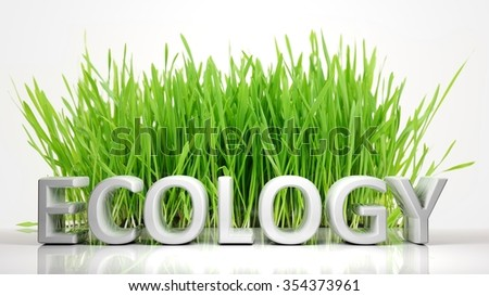 Green grass with Ecology 3D text, isolated on white background. - stock photo