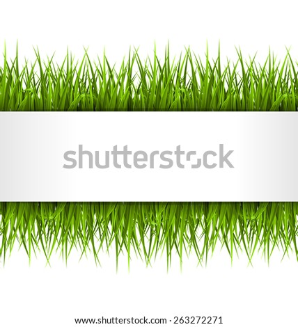 Green grass with frame isolated on white. Floral eco nature background