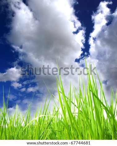 Green grass with perfect sky background - stock photo