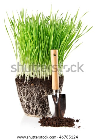 green grass with roots in ground and shovel tool isolated on white background