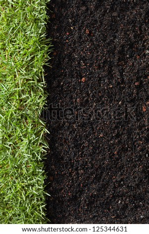 green grass with soil as nature background - stock photo
