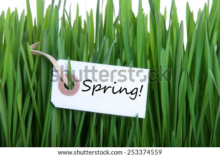 Green Grass With White Label With English Text Spring As Spring Or Easter Background - stock photo
