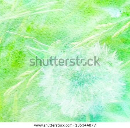 green grasshopper on a white fluffy dandelion - stock photo