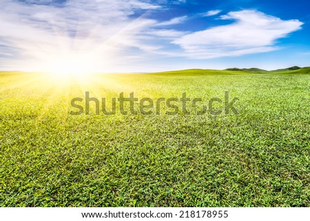 green grassland and blue sky - stock photo