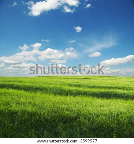 green grassland and white clouds - stock photo