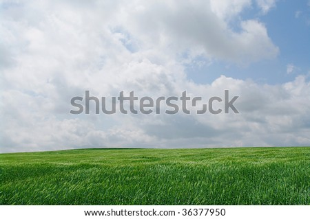 Green grassland with blue cloudscape - stock photo