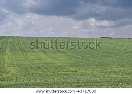 green grassy field with the cloudy sky - stock photo
