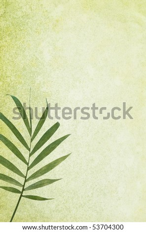 Green grunge background with palm leaf. Detailed texture. Copy-space. - stock photo