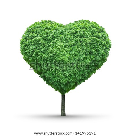 Green heart-shaped tree isolated on white - stock photo