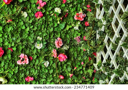 green hedge with plush, flowers and wooden greed - stock photo