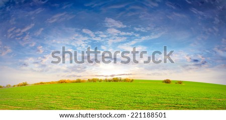 green herb on the field and celestial landscape - stock photo