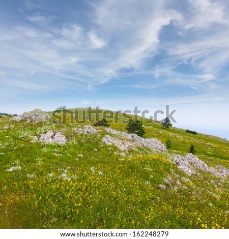 green hill - stock photo