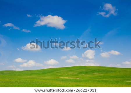 Green hill of Val D'Orcia - Tuscany - stock photo