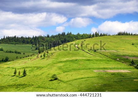 Green hill with pathway. Rural landscape in summer season
