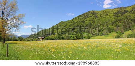 green hillside and pasture, rottach valley, germany - stock photo