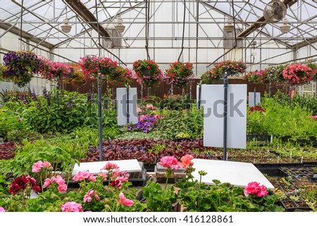 Green house full of colorful flowers and plants.