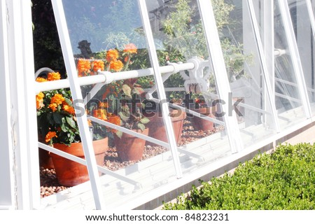 Green house with lots of plants - stock photo